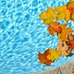 fall pool maintenance